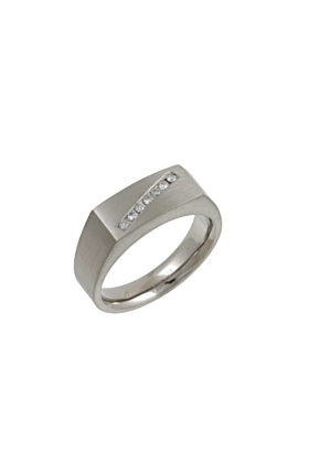 Titanium & Diamond Signet Ring