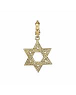 Engraved Star Of David Charm