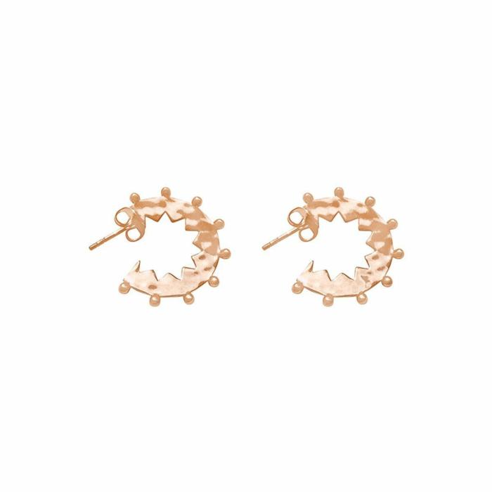 Rose Gold Maya Small Hoop Earrings