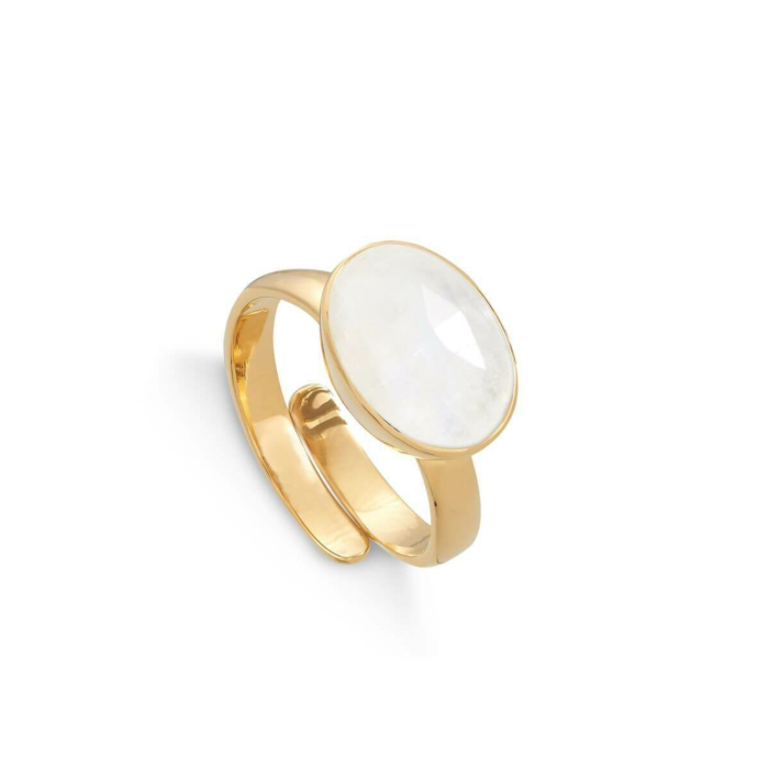 18kt Yellow Gold Plated Silver Atomic Maxi Rainbow Moonstone Adjustable Ring
