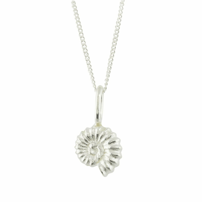 Ammonite Silver Charm