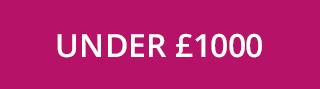 Women's Gifts Under £1000